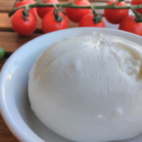 English Burrata (x2)